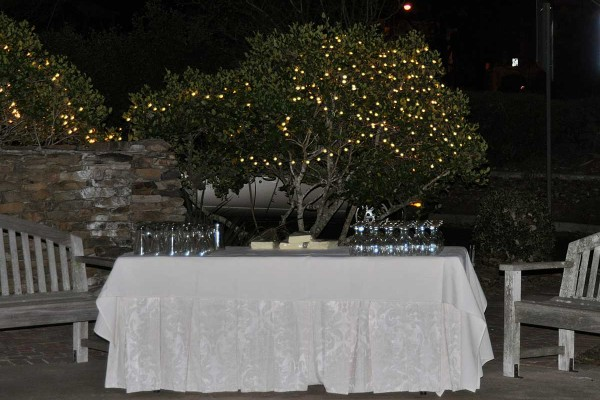cowart-wedding-reception-120614_16246522626_o