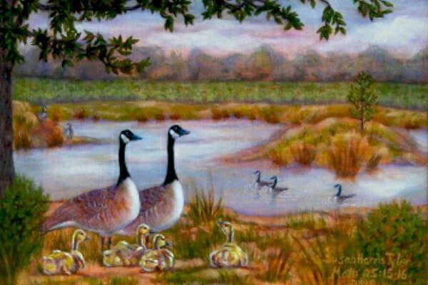 Happy Goose Pond