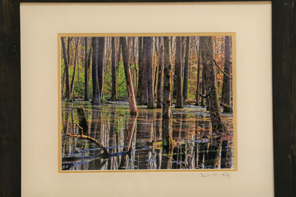 145_Susan Lutz-Reflections on Vernal Pool $200