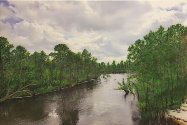 175_Ollene Osborne-Alapaha River $175 *SOLD*