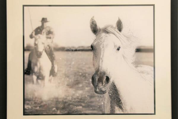 189_David Retterbush-Camargue Horses 1 $400