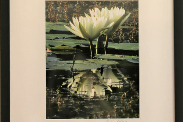 33_Sharon Coleman-Reflections $165