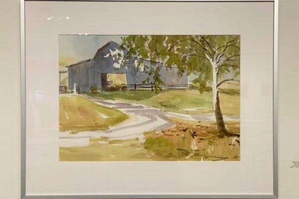 #34 Old Grey 15x22 Watercolor $600