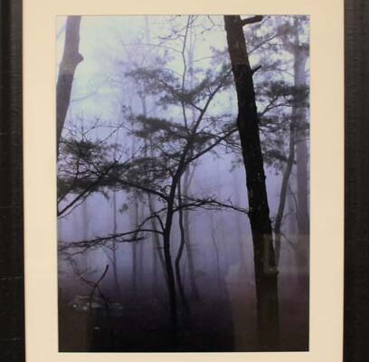 #23 David Bechler-Fog on Lookout Mountain-$200