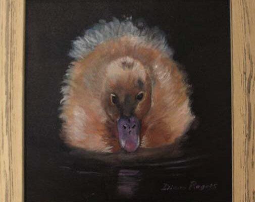 #243 Diane Rogers-Ducky-$325